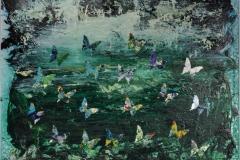 Andrea Gallucci, Farfalle